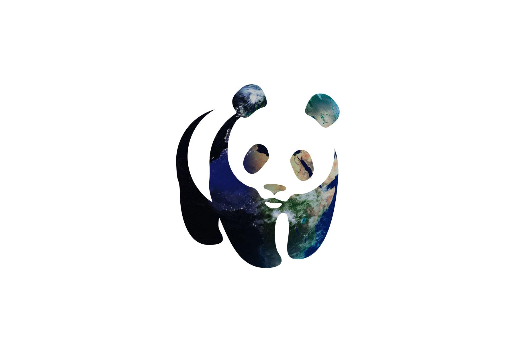 Strip #06 – Rapport Planète Vivante WWF