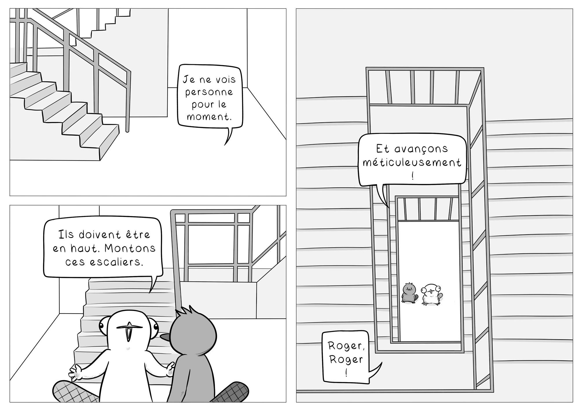 Chapitre 2 Page 03